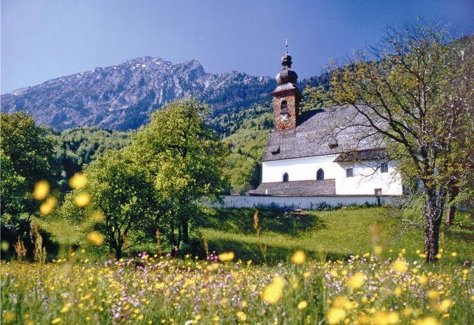Blumenwiese mit Kirche