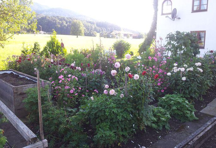 Garten Zottnerhof