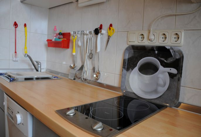 Fewo Meise Küche