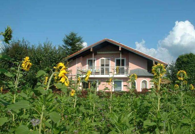 Haus mit Blumenfeld