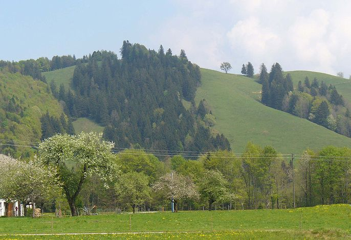 Panorama in Hintergschwendt