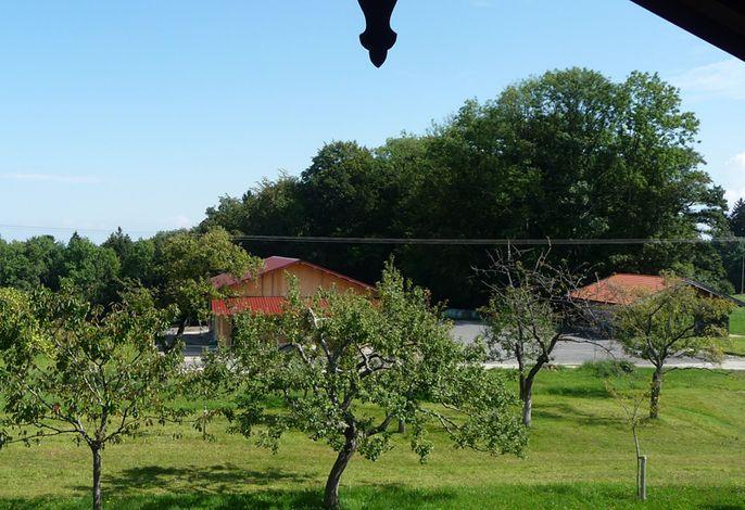 Aussicht auf den Obstgarten
