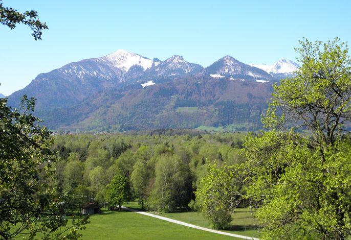 Ausblick vom Westerbuchberg