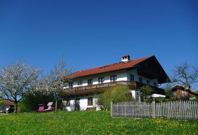 Haus mit Wiese und Bauerngarten