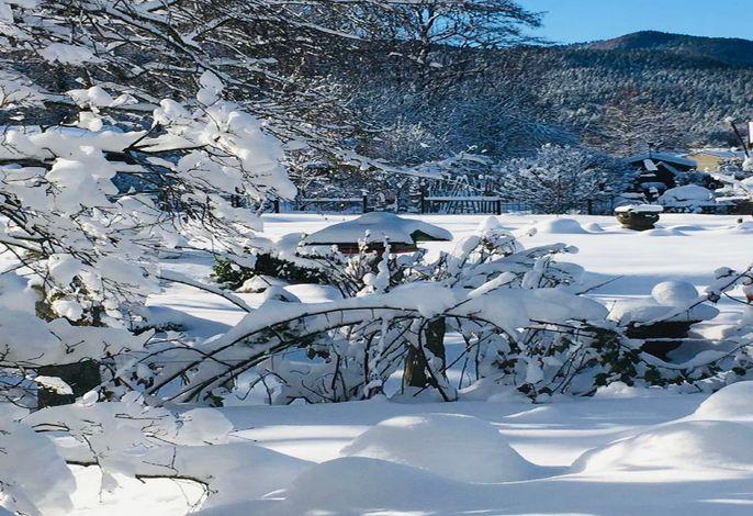 Schneeansicht