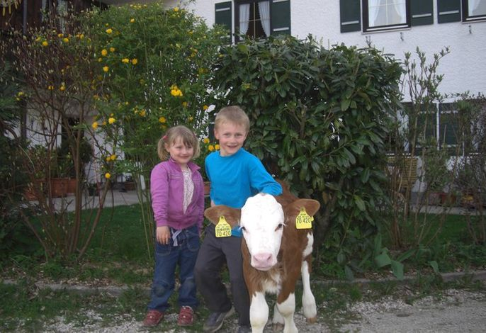Heissenhof Urlaub auf dem Bauernhof