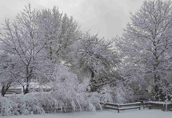 Ferienwohnungen Stecher Garten im Winter