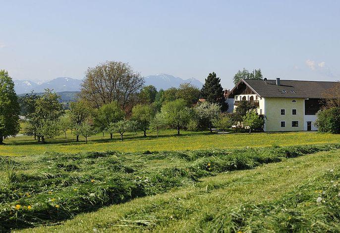 Haus mit Wiesen- und Bergblick