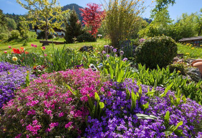 Blumenreicher Garten am Stablehen