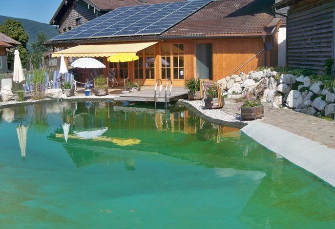 Unser neuer Schwimmteich