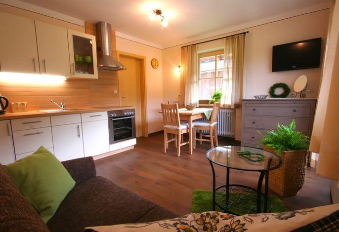 Wohnzimmer in der liebevoll und gepflegt eingerichteten, neuen Ferienwohnung mit 33 qm