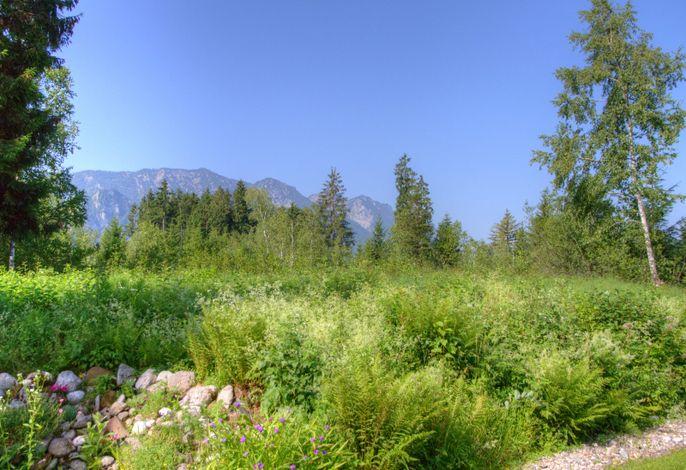Aussicht vom Garten