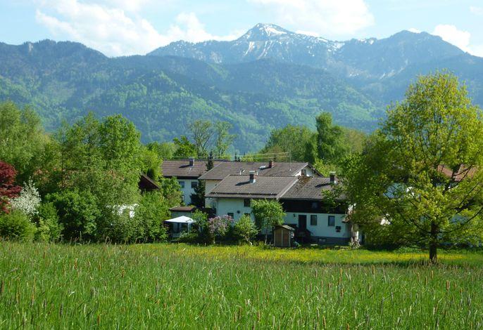 Lage Haus Monika, vorne Wiese(Weide), hinten der Hausberg Hochgern