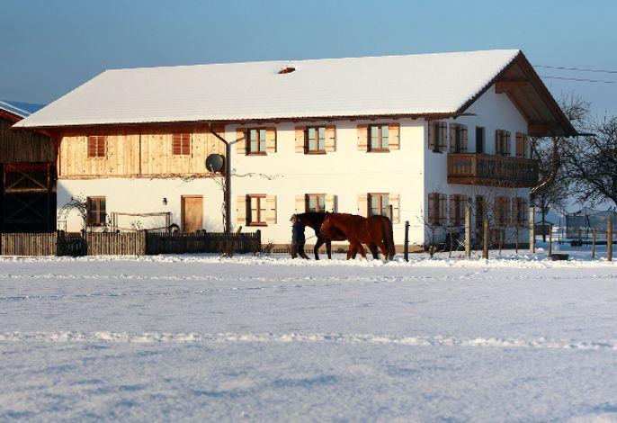 Das Gästehaus im Winter
