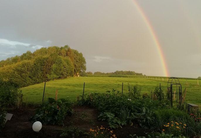 Garten mit Regenbogen am Horizont
