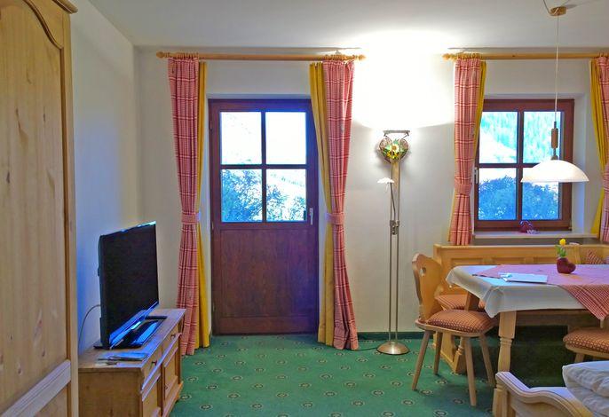 Wohn-Schlafraum mit Terrasse