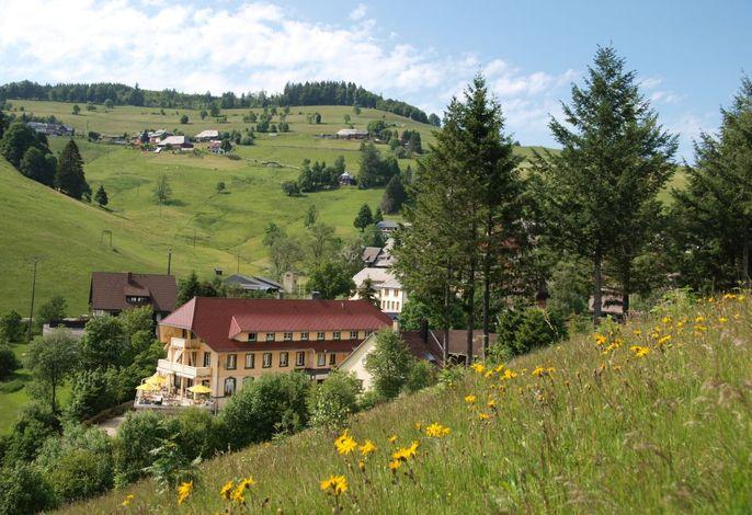 Naturpark-Hotel Grüner Baum