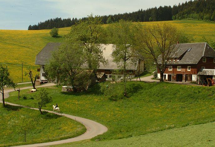 Bartleshof