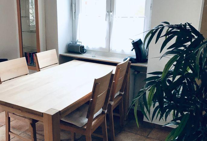 Apartment Molea