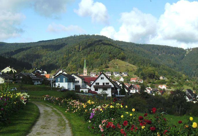 Dahlienallee und Blick auf Bermersbach