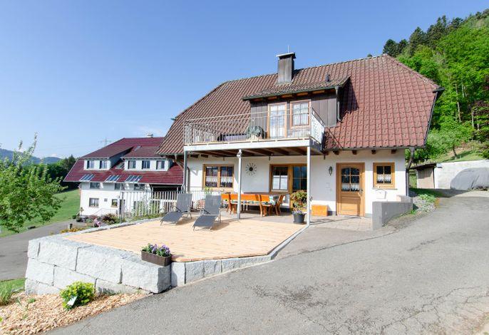 Vordersbergerhof, (Hausach), LHS 01623