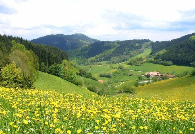 Jungbauernhof