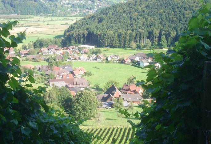Ferienwohnung Himmelsbach