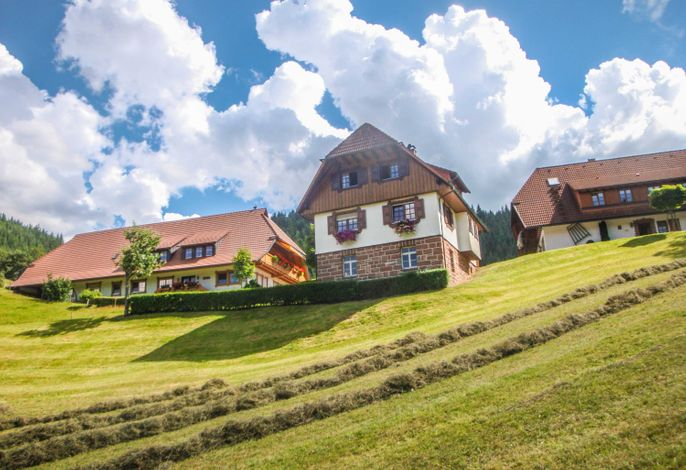 Fussbauernhof