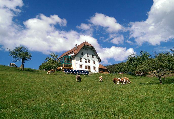 Fehrenbacherhof - Naturgästehaus Ferien - Feiern - Fortbilden