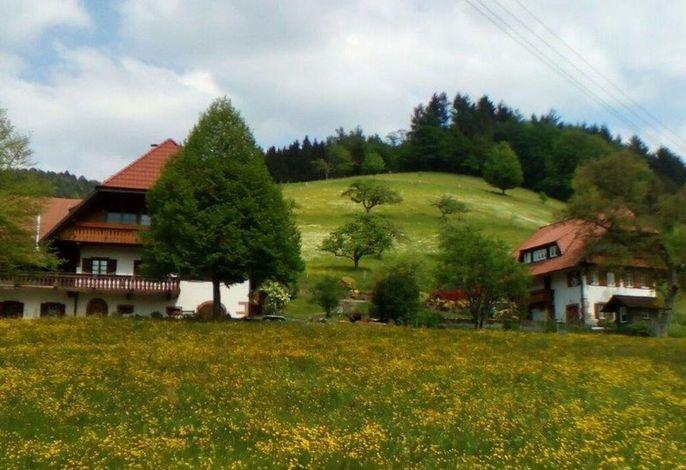 Ferienhaus Vollmer