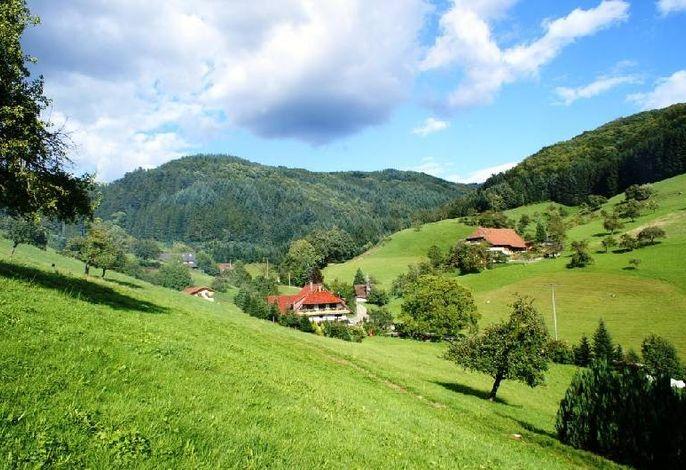 Blick aufs unseren Bauernhof und Obertal