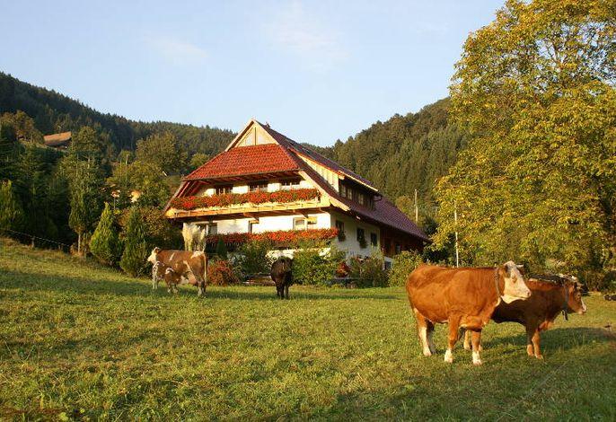 Unterer Gurethshof