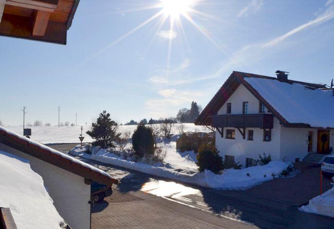Haus Flora, (Höchenschwand), LHS01763