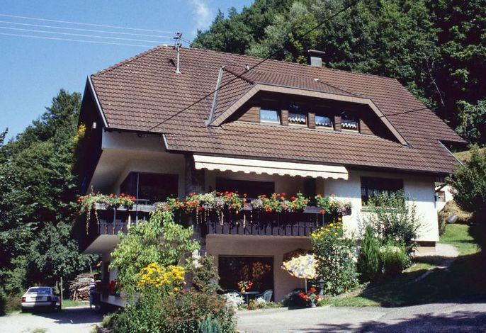 Haus Schindler