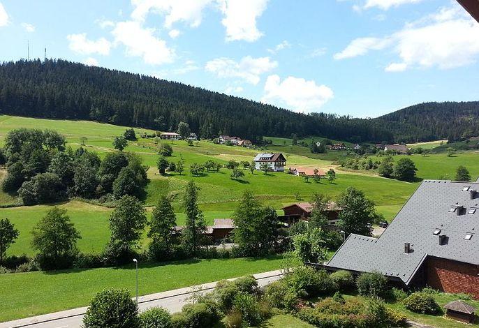 Aussicht App. Schwarzwaldgrund