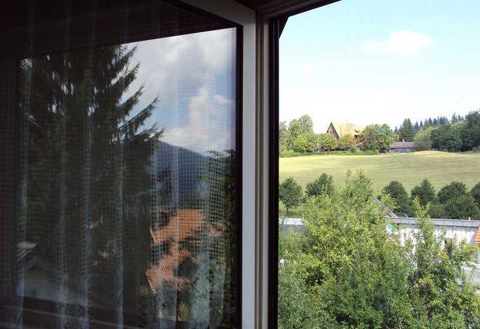 Blick aus dem Fenster.jpeg