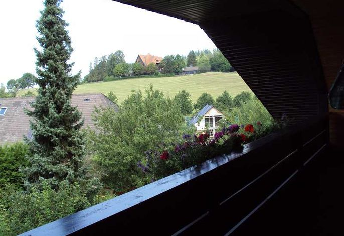 Blick vom Balkon.jpeg