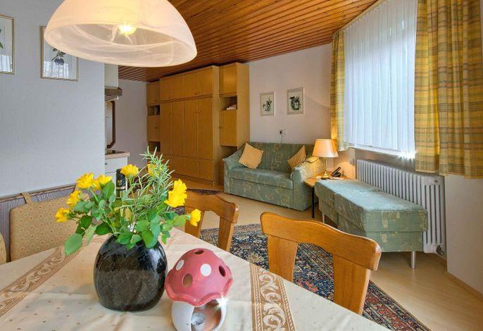 Haus Bergquell, (Münstertal), LHS03823