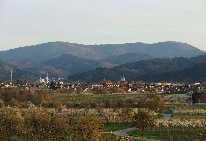 Blick von der Ferienwohnung auf Oberkirch / Moos