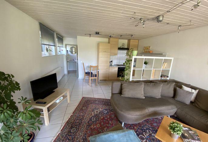 Wohnbereich mit Sofa, Küche und Essecke.
