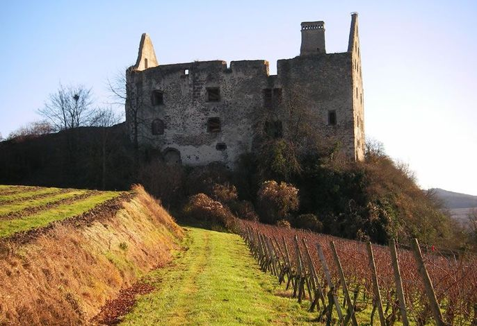 Impressionen Burkheim im Februar