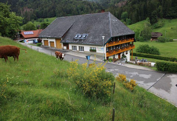 Haus Talblick