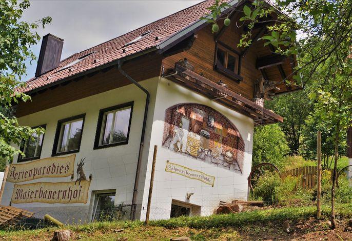 Ferienparadies Maierbauernhof