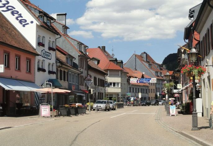 Stadt Elzach