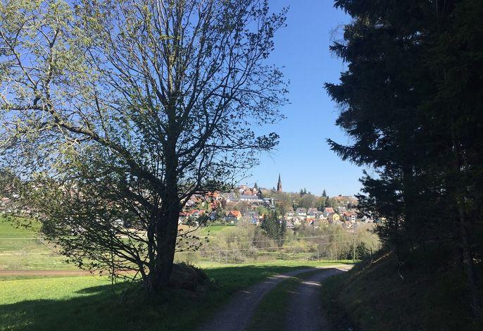 Blick auf St.Georgen