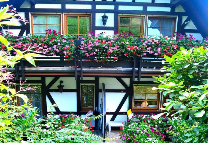 Balkone Terrassen