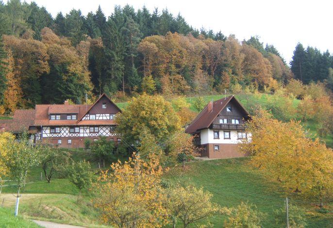 Ferienhof im Herbst