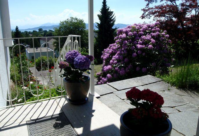Blick von der Terrasse OG