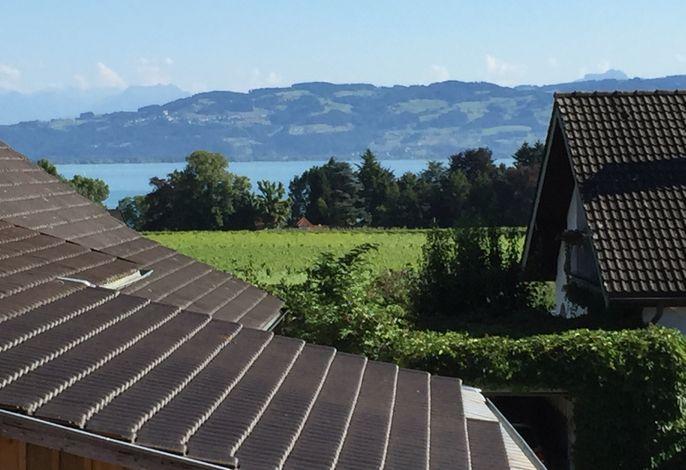 Aussicht vom Balkon in die Schweiz