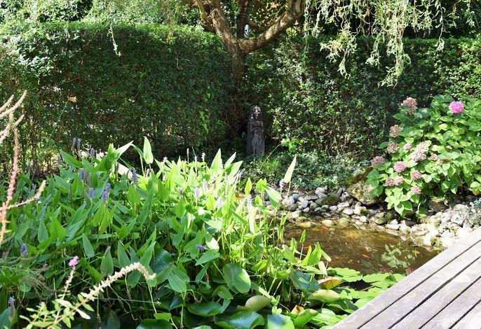 Kleiner Teich am Haus